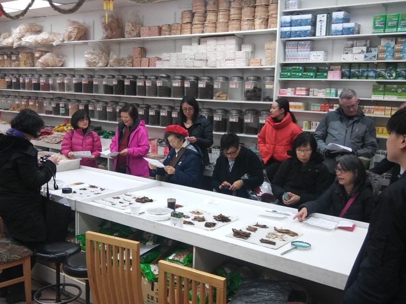 01 – Chinese Medicine Workshop
